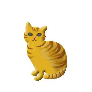 猫ピック チャトラ