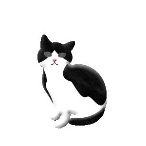 猫ピック シロクロ