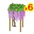 藤棚 紫 6個