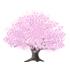 桜の木A 薄ピンク