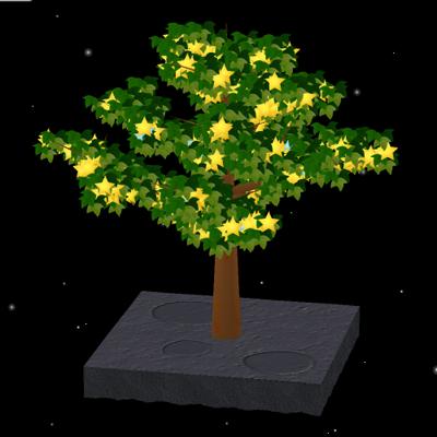 【イベントその3】コノキの実が星の形になる