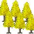 イチョウの木A 3種6本