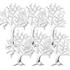 樹氷 2種6本