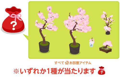 部屋袋桜の木