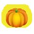 丈夫なかぼちゃ B 大 橙