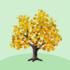 ちびカエデの木A 橙