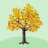 でかカエデの木A 橙