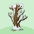 枯れ木B 雪