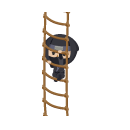 忍者の縄はしご