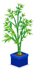 七夕かざり竹鉢植Lv1