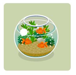 球形金魚鉢