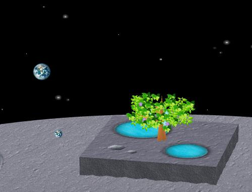 コイコイ太陽系 地球 コーディネート例