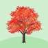 光るカエデの木B 赤
