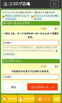 オプション選択画面