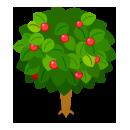 リーフツリー苔緑 実