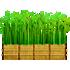 竹の壁(庭)