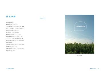 Y_photo_3