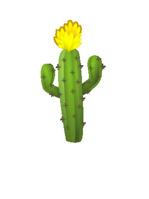 ハシラサボテン 黄