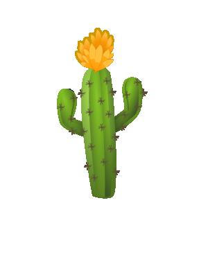 ハシラサボテン 橙