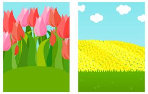 背景:チューリップ畑・菜の花畑