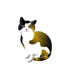 猫ピック ミケ