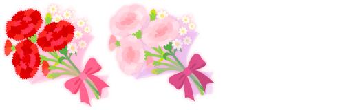 カーネーション花束各種