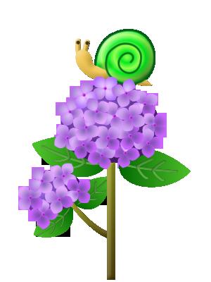 80002ajisai_b_purple_snail_l