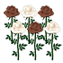 バラ2種 6本