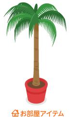 ヤシの木鉢植小