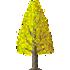 イチョウの木B