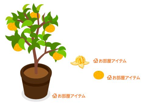 鉢植みかんの木・むいたみかん・みかん1個