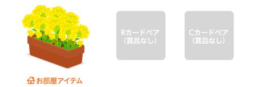 プランター菜の花