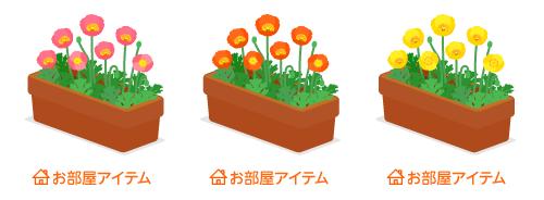 プランターポピー桃・プランターポピーオレンジ・プランターポピー黄