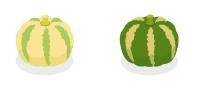 ミニかぼちゃ球白・ミニかぼちゃ球緑