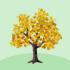 カエデの木A 橙