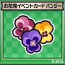お花見イベントカードパンジー