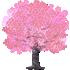 桜の木D 濃ピンク