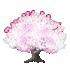 桜の木A 白