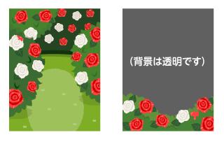 背景:アリスのバラ園・バラ園フレーム
