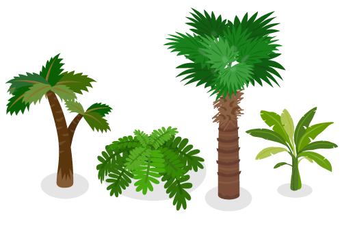 古代植物ヤシ・古代植物シダ大・古代植物シュロ・古代植物サトイモ科