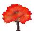 光るカエデの木 赤