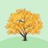 光るカエデの木A 橙