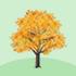 光るカエデの木B 橙