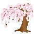 光るしだれ桜B