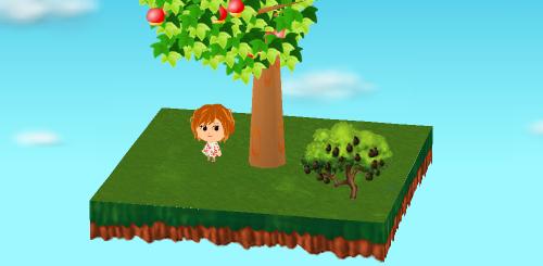 アボカドの木 設置例