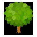 リーフツリー若草緑