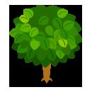 リーフツリー苔緑