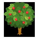 リーフツリー草緑 実