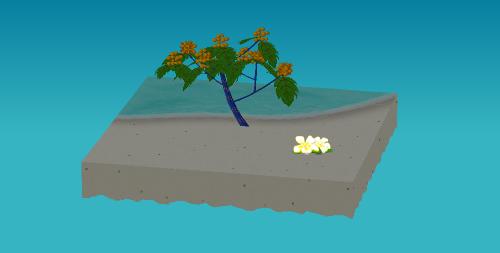 プルメリアの庭飾り 白2輪 設置例