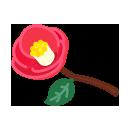 手持ち椿の花